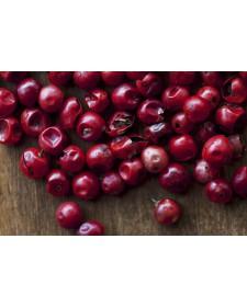 roter Pfeffer / rote Beeren 50 Gramm
